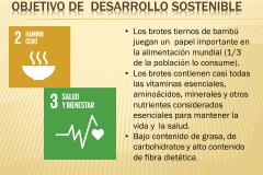 1_Diapositiva7